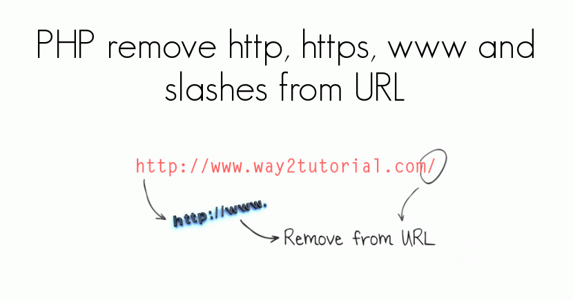 PHP remove http, https, www and slashes from URL
