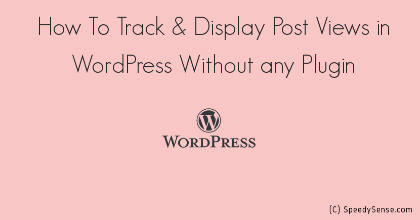 How To Track & Display Post Views in WordPress Without Any Plugin